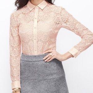 Ann Taylor blush pink lace top